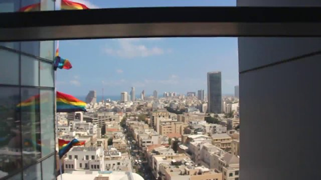 Pride Flags  thumbnail