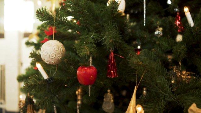 Close Up of Christmas Tree Ornaments thumbnail