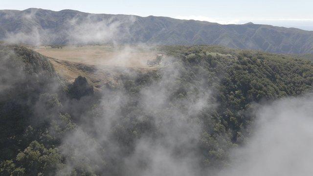 The Misty Landscape of the Mountain Range, Fanal Madeira Island thumbnail