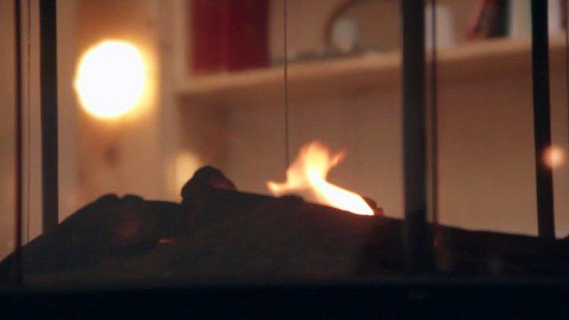 Cozy Fireplace thumbnail