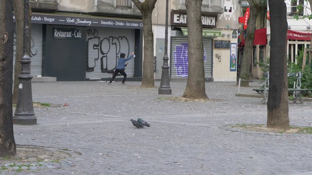 Woman Doing Tai Chi In Empty Paris Square  thumbnail