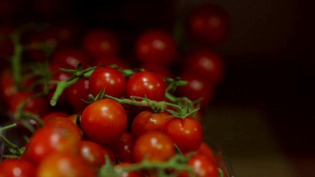 Picking up Tomatoes thumbnail