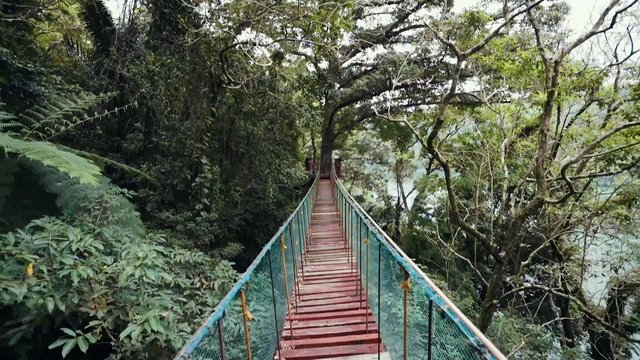 POV Crossing Jungle Bridge thumbnail