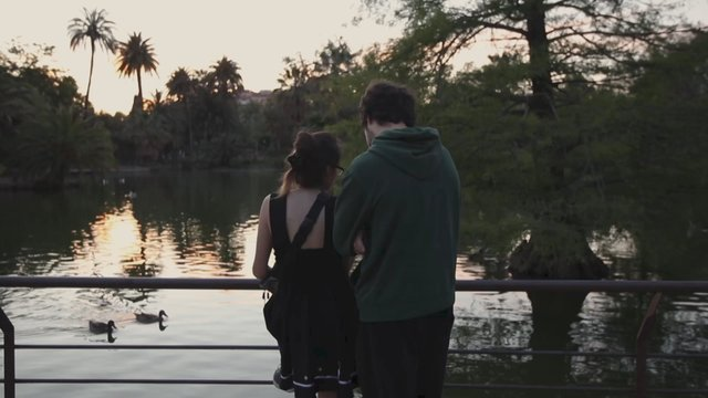 Couple in the Park thumbnail
