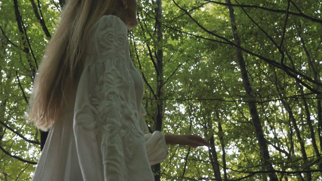 Girl Raises Her Hand to the Tall Trees thumbnail