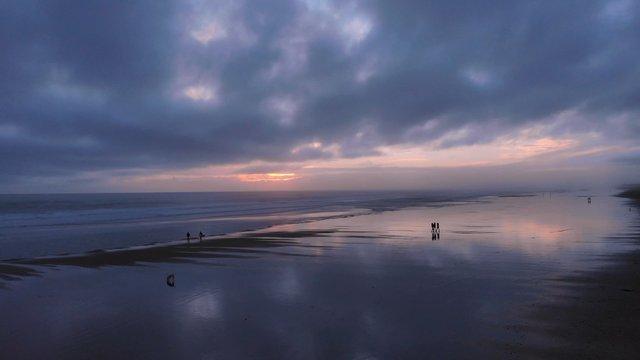 Mesmerizing Purple Sunrise On Muriwai Beach, NZ  thumbnail