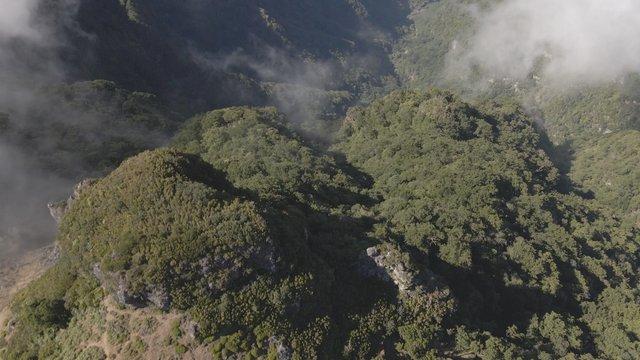 The Wonderful Beauty of Misty Mountains thumbnail