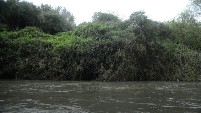 River Flow thumbnail