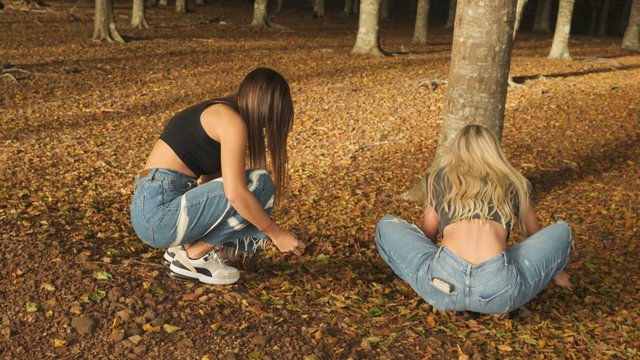 Young Girls Collect Fallen Leaves thumbnail