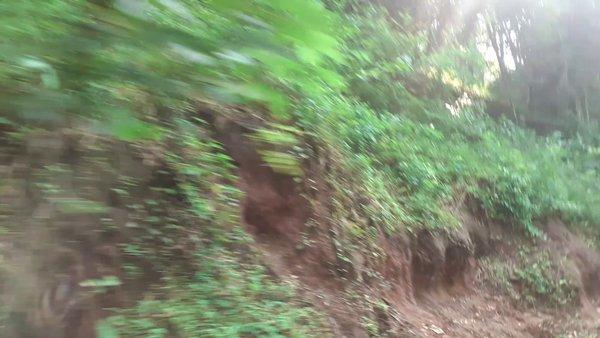 Top slip- Ecotourism