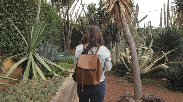 Woman Takes Photos of Plants thumbnail