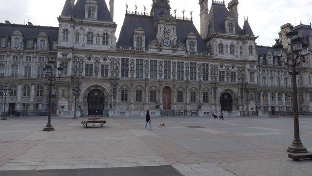 Dog Walking Near Hôtel de Ville In Paris thumbnail
