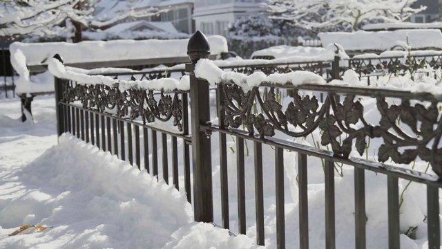 Fency Snow thumbnail