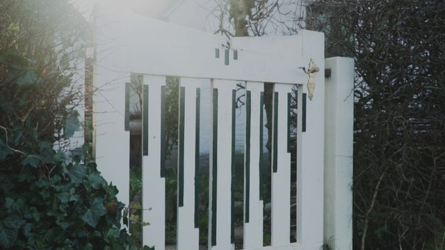A Panning Shot Of Backyard thumbnail