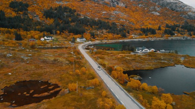 Lofoten Landscape  thumbnail