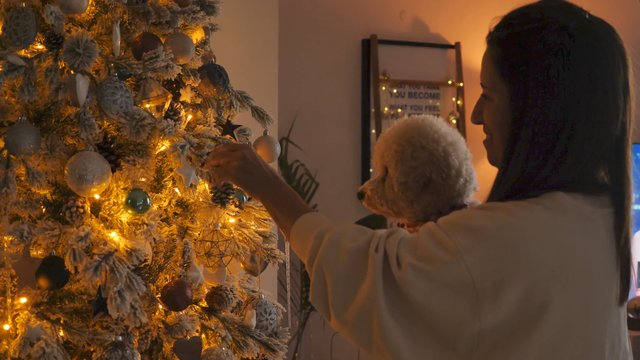 Woman With Her Pet Decorates a Christmas Tree thumbnail