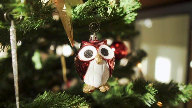 An Owl Ornament on a Christmas Tree thumbnail