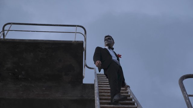 A Man Stands on a Ladder and Looks Around thumbnail
