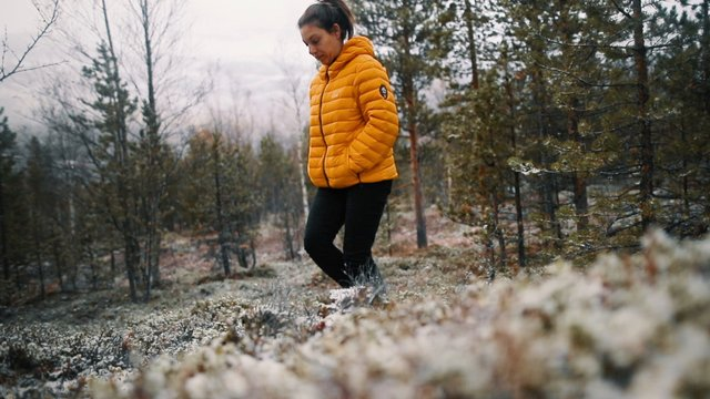 Woman Walks In The Forest thumbnail