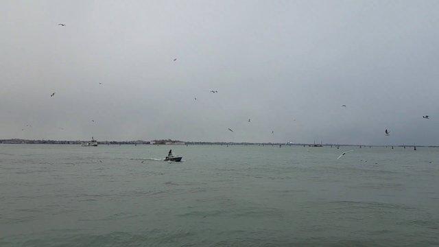 Sailing Mini Boat thumbnail