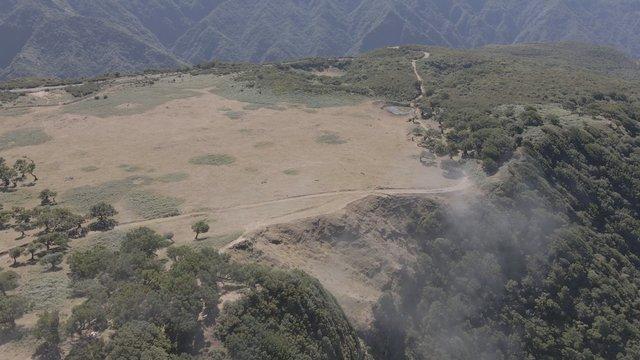 Drone View of the Mountain Range, Fanal Madeira Island thumbnail