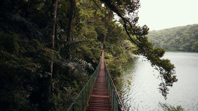 Bridge Above Water thumbnail