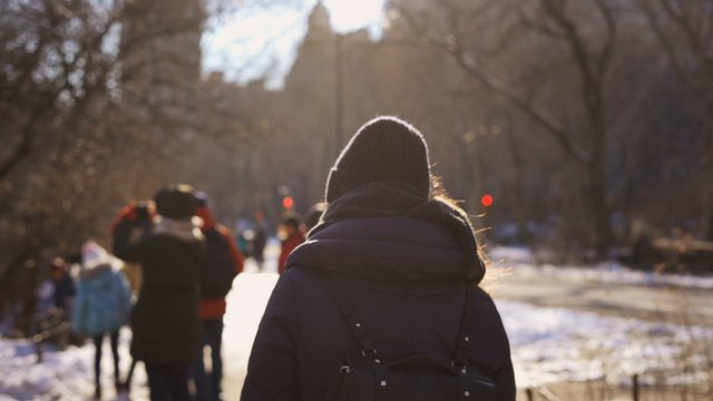 Winter Walk in the Park thumbnail