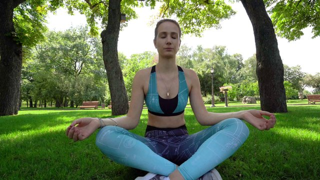 Meditation in the Park thumbnail