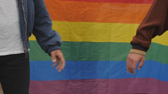 Gay Couple Holding Hands near Pride Flag thumbnail