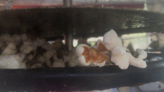 Popcorn Time thumbnail