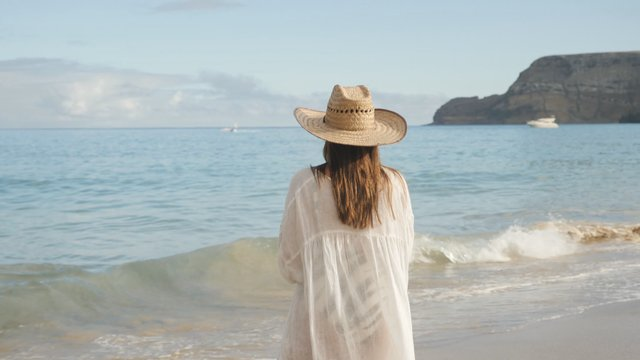 Woman With a Hat on the Beach thumbnail