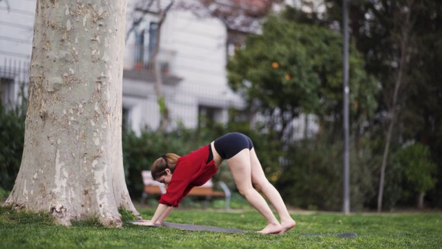 Woman Performing Handstand In The Park  thumbnail