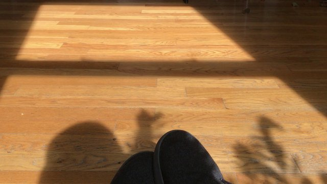 Shadow on a Wooden Floor thumbnail