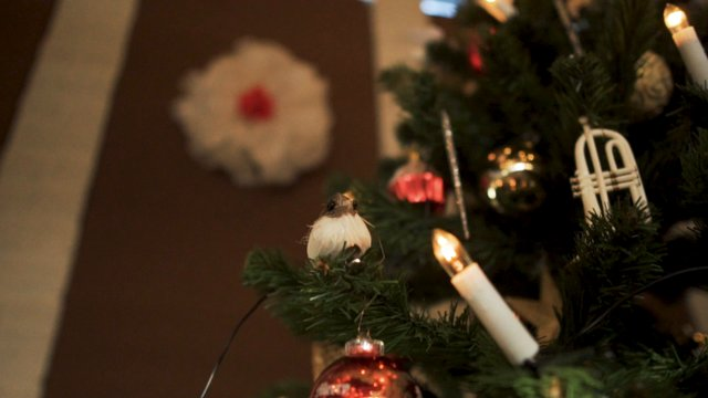 Close up on Different Christmas Tree Ornaments thumbnail