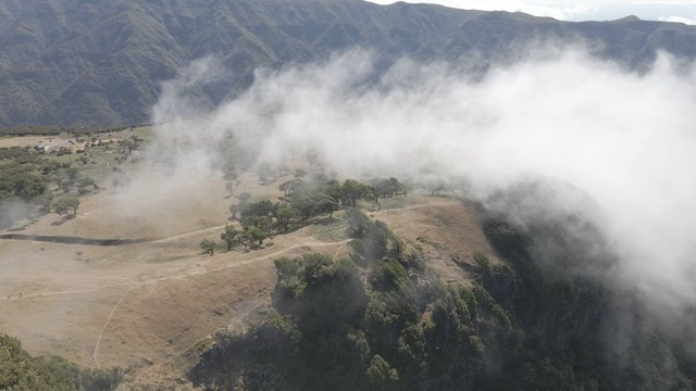 Mountains Covered With Fog, Fanal Madeira Island thumbnail