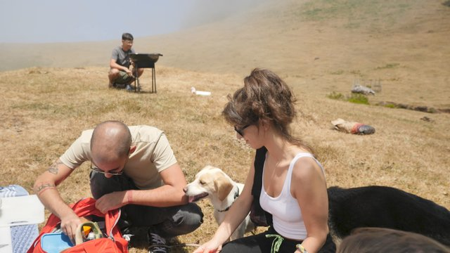 A Picnic in the Outdoors thumbnail