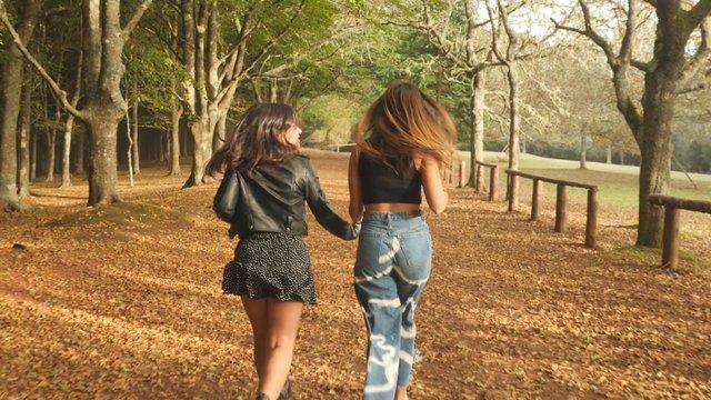 Girlfriends Run Along the Path  thumbnail