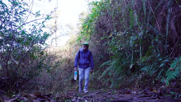 Offbeat Meghalaya - David Scott Trail - 16KM Trek - Real Scotland of India - #TravelVlog