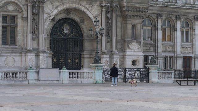 Playing With Dog Near Hôtel de Ville thumbnail