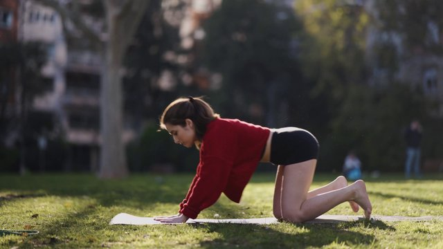 Stretching Exercise In The Park  thumbnail