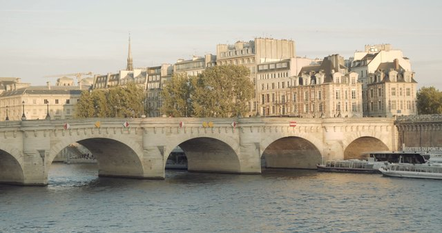Pont Neuf in Paris, France thumbnail