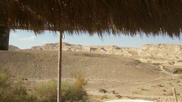 Desert Oasis thumbnail