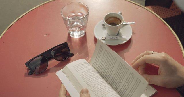Reading a Book in a Paris Cafe  thumbnail