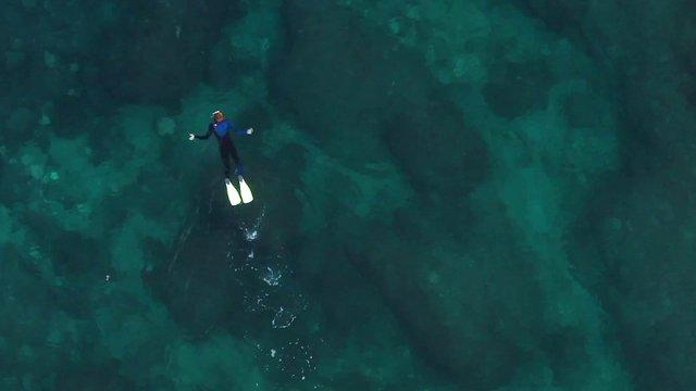 Diver in Oceanic Paradise thumbnail
