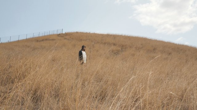 A Girl Walks in the Field and Looks Back thumbnail