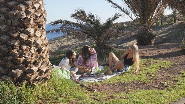 Girls Having a Picnic near the Ocean  thumbnail