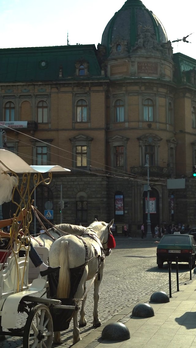 Horse Ride in the City thumbnail