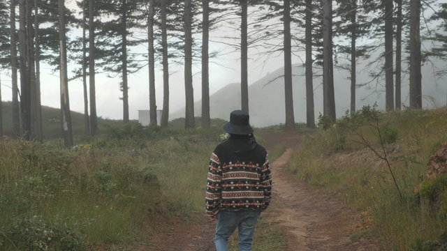 Boy Tripping on Walk in Misty Forest  thumbnail