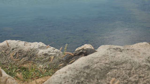 Rocky Coast in Porto Santo thumbnail