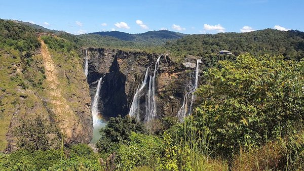 Nature around Jog Falls
